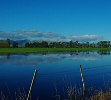 """floodwaters""   canterbury, south island, nz by rina  thompson"