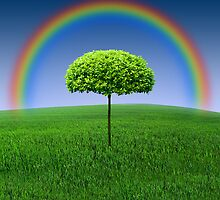 Evergreen Topiary tree with Rainbow over by Nasko .
