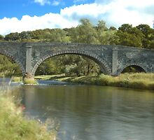 River Tweed crossed by an old Scottish bridge by Glen Jones