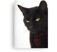 Panther Inside - Burmese Cat Canvas Print