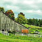 Rural Vermont Gem by Deborah  Benoit