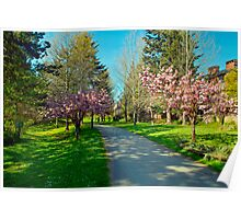 The Prunus Path, Vancouver, BC Poster