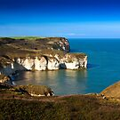 Coastal View Flamborough Head - East Yorks. by Trevor Kersley