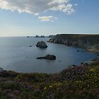 Pointe de Portzen by marens