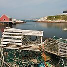Peggy&#x27;s cove through a lobster trap by Robert Kelch, M.D.