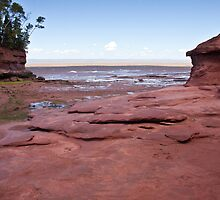 Low tide at Burntcoat Point Park - Bay of Fundy by Robert Kelch, M.D.