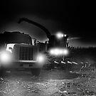 night harvest ? by pdsfotoart