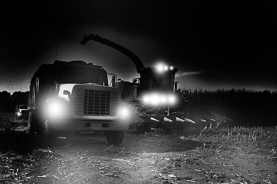 night harvest ? by pdsfotoart