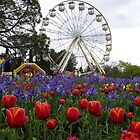 Floriade by Ellanita