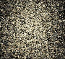 On the Rocks by lokanin