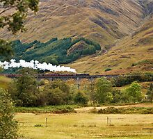 Glenfinnan Viaduct, Scotland (Loch Shiel, Glenfinnan, Scotland) by Yannik Hay