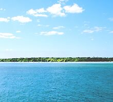 North-West Island - Capricornia Cays - Great Barrier Reef by warmonger62