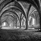 Fountains Abbey Cellarium by Neal Petts