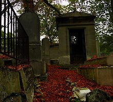 Fall in Pere Lachaise by djjs