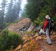Sahalie Arm Trail by Inge Johnsson