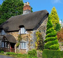 Ashwell Lodge, Devon by rodsfotos