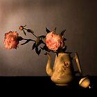 Peonies by Elma Claassen