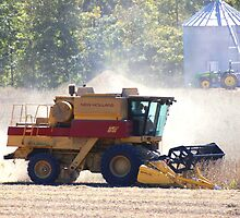 Autumn means Harvesting Soybeans by barnsis