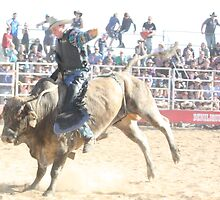 Deniliquin Rodeo 2010   by Cathy McAdie