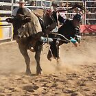 Deniliquin Rodeo 2010  - getting off by Cathy McAdie