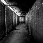 Battery Tunnel by Robert Baker