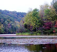 colorful plum orchard lake in WV by fotoflossy