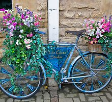 Floral Bike at Chipping Campden, Cotswolds by Pauline Tims