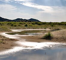 Small dune lakes by Adri  Padmos