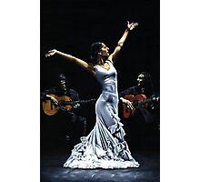 Finale del funcionamiento del flamenco Photographic Print