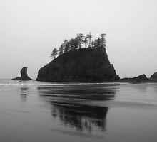Mystic Waters by Cheri Bouvier-Johnson