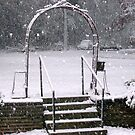 Heavy Snow in Mississippi by Dan McKenzie