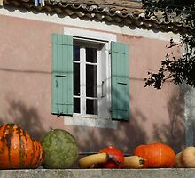 Autumn in Provence by solena432