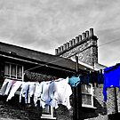 Washing Line by Karen Martin IPA