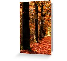 Lovely October Colors Greeting Card
