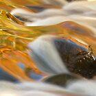 Boulder Junction by Gina Ruttle  (Whalegeek)