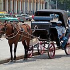 Horse & Buggy 3 by DJohnW