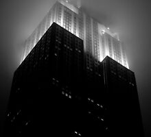 Empire State Building by night by danwa