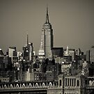 New York City by danwa