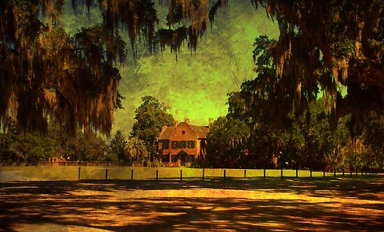 Middleton Place 2 by Susanne Van Hulst