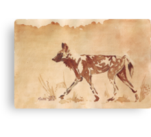 Painted Dog - African Wild Dog Canvas Print