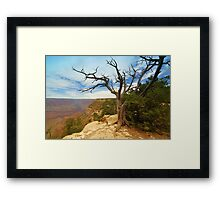 """South Rim"" Framed Print"