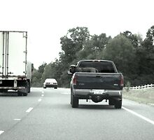 Truckin Dog by Jonathan  Green