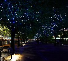Blue Embankment Tree Walk by Paul Revans