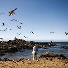 the man who talked to the seagulls by damien-c