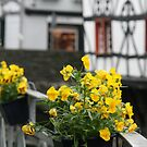 Monschau flowers by DKphotoart