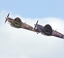 A Pair of Spitfires by Sylvia Fresson