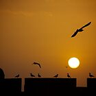 Sunset over Essaouira by EveW