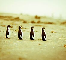 Penguins marching on the sand by Iuliana Evdochim