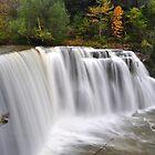 Ludlowville Falls by Paul Swiatkowski