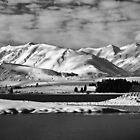 Lake Tekapo - NZ by Dean Mullin